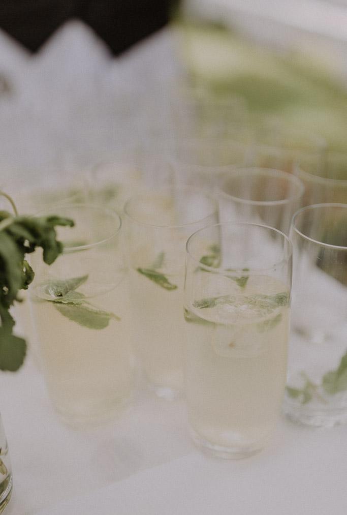 Gekühlte Getränke mit Limette und Zitrone